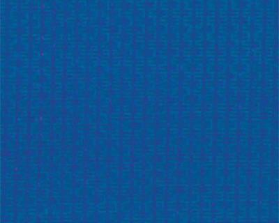 Toile en Polyéthylène : Bleu