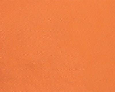 TOILE EN DRALON : Orange