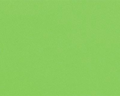 TOILE EN DRALON : Vert pistache