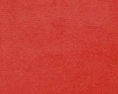 Rouge FR018